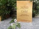 MMS-Gold Das neue Lebensmineral (Buch)