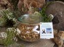 Moringa Blüten 50g exquisit