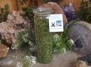 Moringa Blätter 50g exquisit