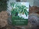 Moringa Oleifera - Die wichtigste Pflanze in der Menschheitsgesc