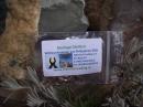 Moringa Oleifera Wildwuchssamen 6 Stk