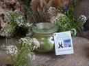 Moringa Pulver 60g exquisit